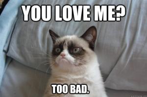 Grumpy-Cat-meme-610x405